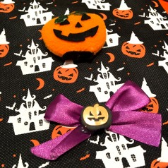 http://www.shop.usbdolls.com/75-302-thickbox/halloween-bag-name-orange.jpg